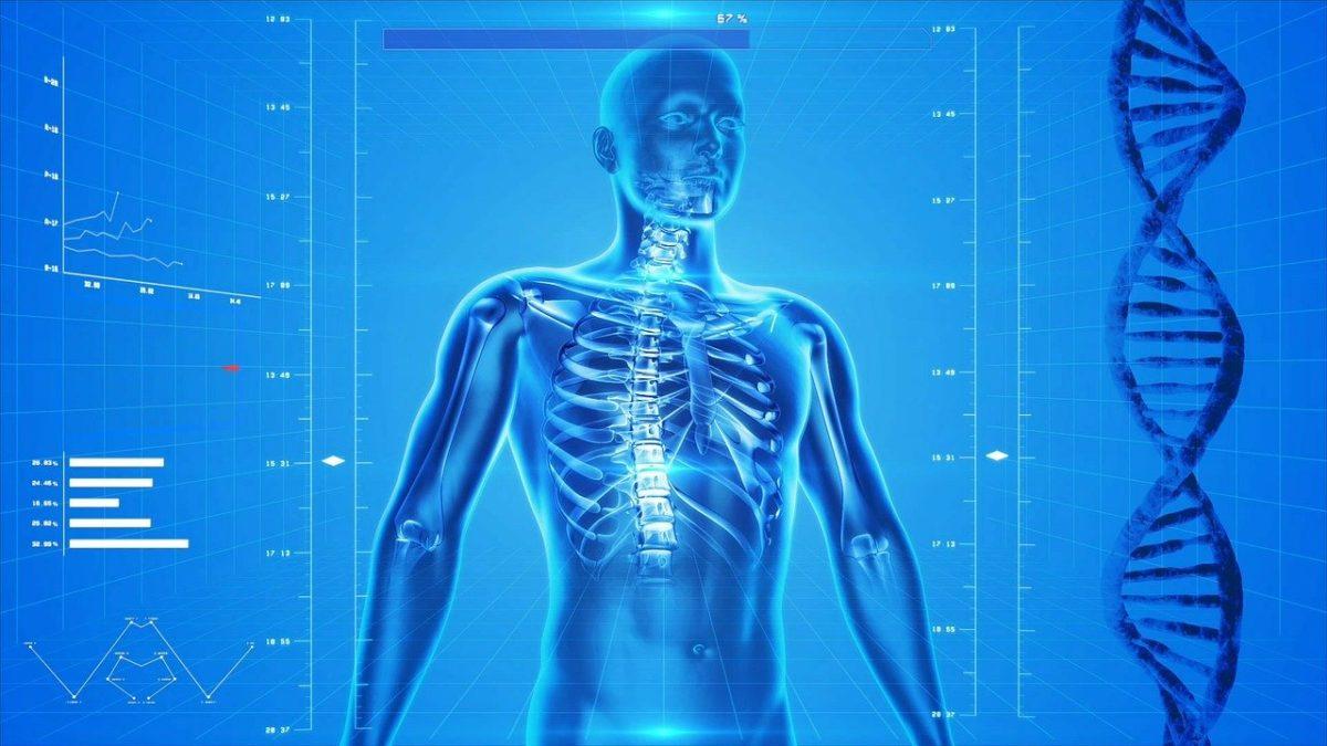 Basta dare uno sguardo ad una radiografia, ed ecco come un algoritmo di machine learning permette di prevenire gli infarti.