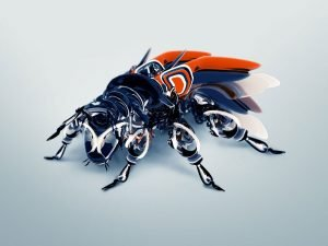 AI insetti
